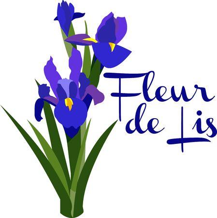 Iris means rainbow. It has many colors.So Enjoy the beautiful Iris Design Иллюстрация