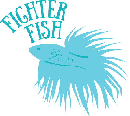 bibs: Enjoy the fighter fish of the Orient in their bright and colorful best on bodysuits, layettes, baby t-shirts, hats, bibs  more!