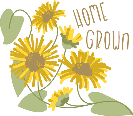 aster: Decorate your homes with the warm glow of sunflowers and add sunshine to your projects with this bold and beautiful design.