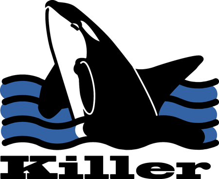 killer waves: This orca rises from the waves in a beautiful spray for pillows, beach bags, wall hangings and more. Illustration