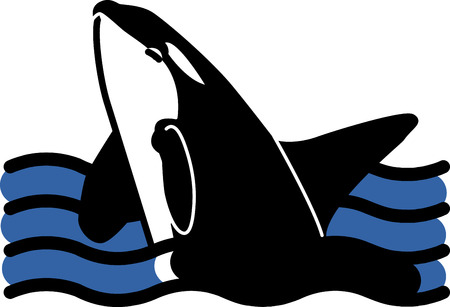 watcher: This orca rises from the waves in a beautiful spray for pillows, beach bags, wall hangings and more. Illustration