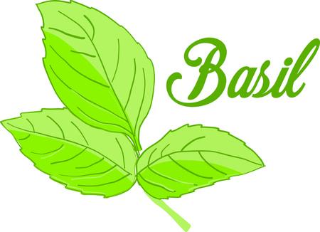 Wake-up van uw smaakpapillen! Vonk uw voedsel met dit basilicum ontwerp op theedoeken, tafellinnen, servetten en nog veel meer!