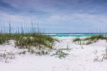 shore line: Beautiful shore line with waves beyond the dunes