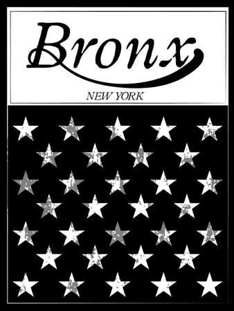 bronx: Bronx New York sport typography; t-shirt graphics; vectors