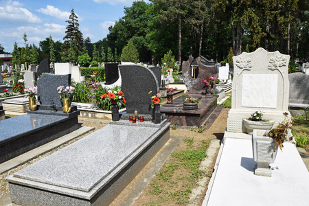 tombstones: Tombstones in the public cemetery