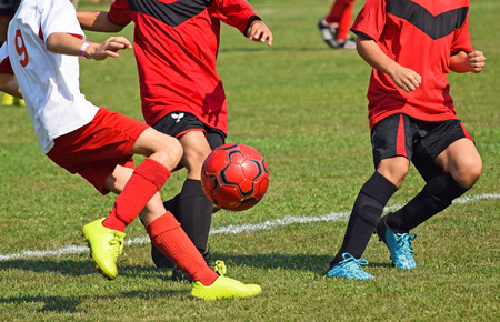 uniform green shoe: Young soccer players in action