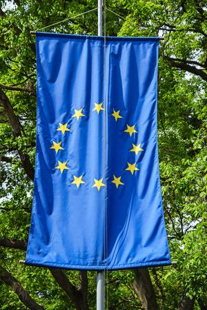 european union flag: european union flag