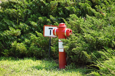 fire hydrant: Fire hydrant in the park Stock Photo