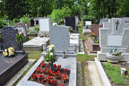 outdoor lighting: Tombstones in the public cemetery