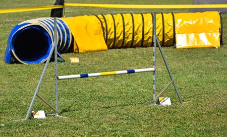Hurdle gate and tunnel of the dog agility contest