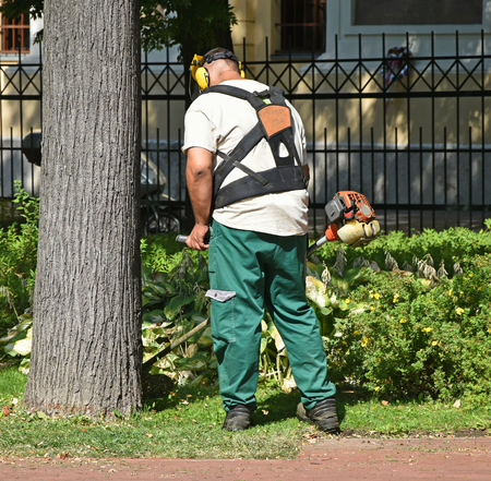 Man is mowing the grass in the park
