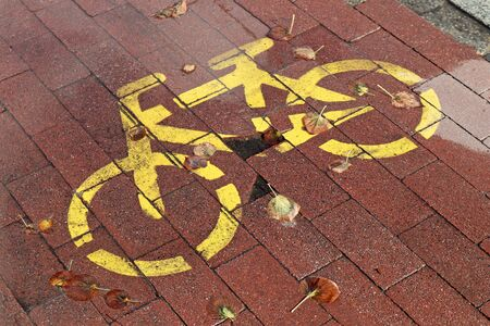 Sign of the bicycle road in the city