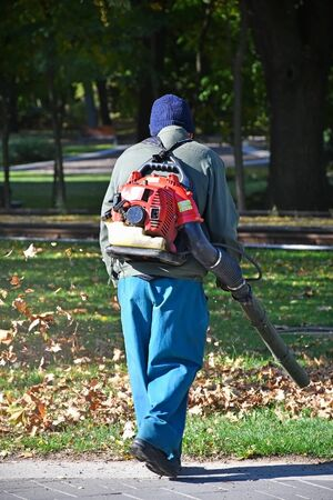 Worker cleaning the fallen leaves on the street Stockfoto