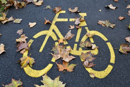 Bicycle road sign in autumn time