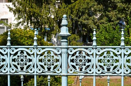 Ornate metal fence in front of a tree