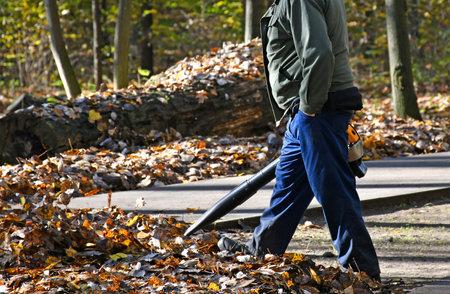 Gardener works outdoor autumn time