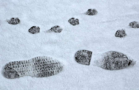 Footprints in the snow winter time
