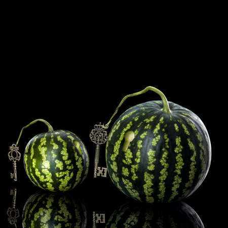 rend: small watermelon on a black background reflection