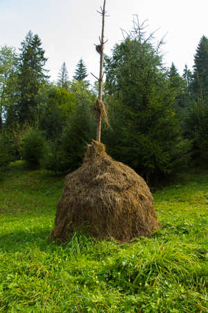 hayrick: A stack of hay in the mountains