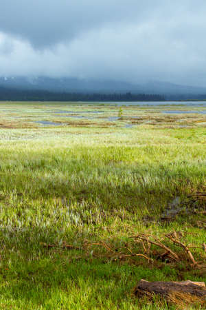 ensures: Wetland conservation project in Oregon ensures natural beauty and destination activities