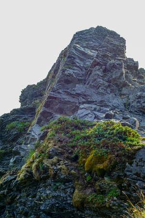 jagged: Jagged rock outcrop