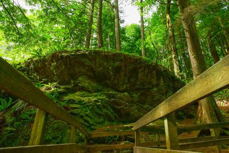 diverted: Hiking trail is diverted around large granite boulder