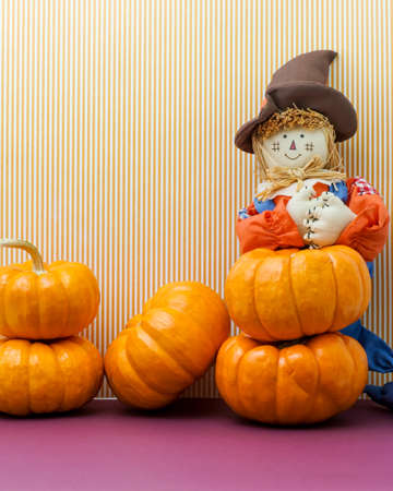 Scarecrow surrounded by several pumpkins photo
