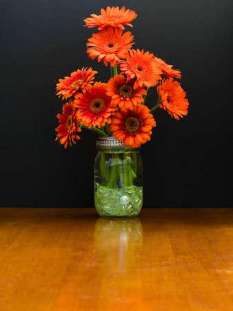 shasta daisy: Mason jar vase contains a bunch of burnt orange daisies
