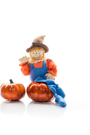 overalls: Cute and friendly scarecrow doll in overalls
