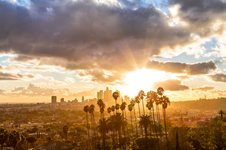 Los Angeles Golden Hour With Clouds and Palm Trees Фото со стока