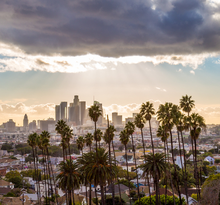 Downtown Los Angeles and Palm Trees with Clouds and Sunshine