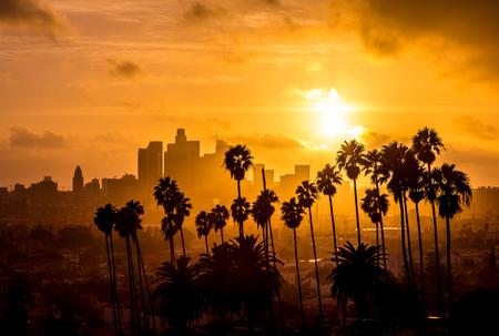 다운타운 로스 앤젤레스와 야자수 골든 아워