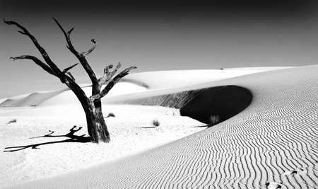 desert, white sands, new mexico Stock Photo