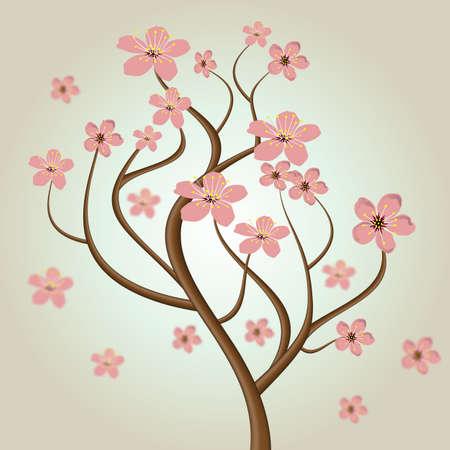 knospe: cherry blossom tree Illustration
