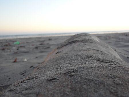 log buried by beach sand Фото со стока