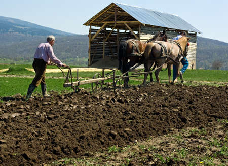 plough land: Two men work on the field with horses