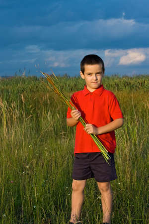 Happy little boy holding in his hands reeds Stock Photo
