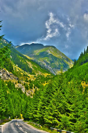 Beautiful Carpathian mountains in sunny weather Stock Photo