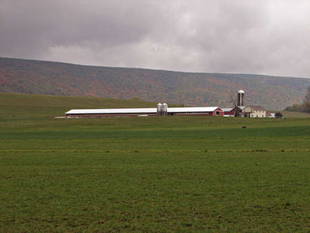 Poultry farm on an overcast fall day in Elimsport near Williamsport, Lycoming County, Pennsylvania.