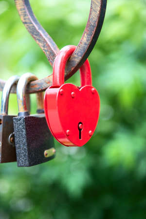 love forever - padlocks on the bridge Stock Photo - 13731100
