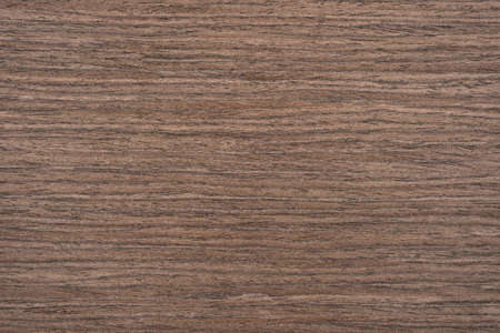 beech wood: Fragment background of wooden texture for designers Stock Photo