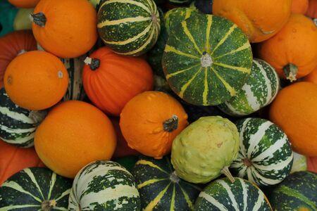 Seasonal Pumpkin and Squash Collage Stock Photo - 131734743