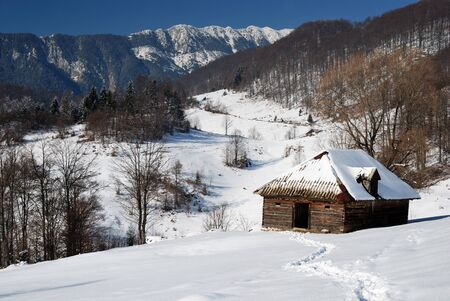 carpathian mountains: Winter rural landscape in Romania, Sirnea village, Carpathian mountains