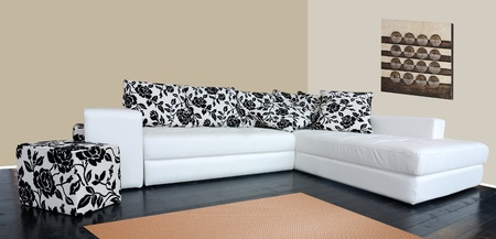 settee: Modern luxury sofa with skin tapestry