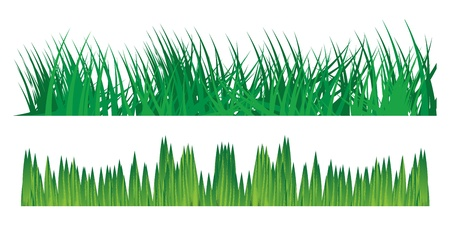 Grass vector background, illustration Stock Vector - 12069660