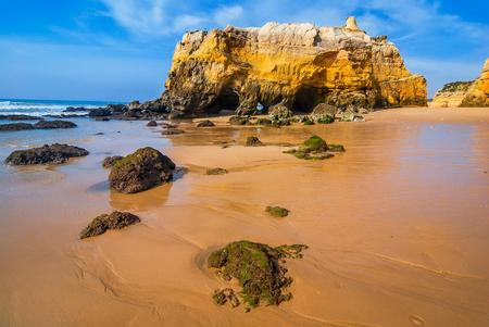 rocha: Praia da Rocha. Idillyc landscape with golden sands beach at coast of Algave, Portugal
