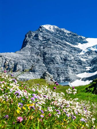 confederation: Eiger, Switzerland. One of amazing mountain peaks in Berner Oberland part of European Alps, main landmark of Swiss Confederation
