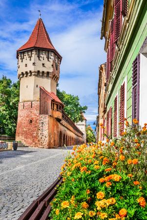 シビウ, ルーマニア - トランシルヴァニア地方のザクセンの都市の中世のダウンタウン。大工タワー。