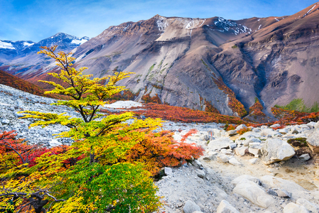 Patagonia, Chile - Torres del Paine autumn landscape in Cordillera Paine, Magelanes Regioon, South America. Reklamní fotografie