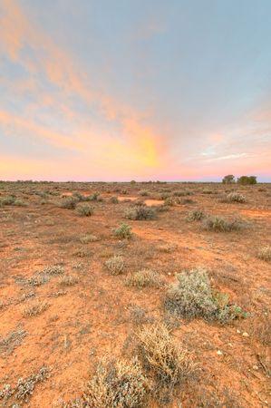 simpson: Early morning light in the Simpson Desert, Australia